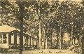 Sanatorien (6): Anstalt im Baumbusch